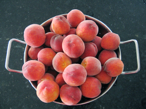 Peaches for Peach Recipes by FamilySpice.com