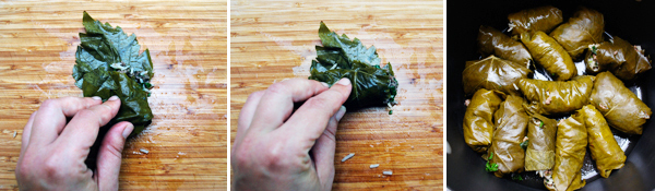 Stuffed Grape Leaves: Beef and Pomegranate Dolmeh by FamilySpice.com