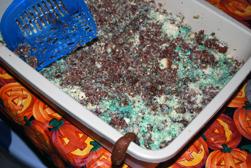 kitty litter cake by